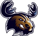 Maine Augusta Moose