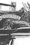 Darwinian Schooner