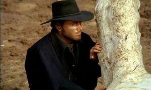 Django behind cover