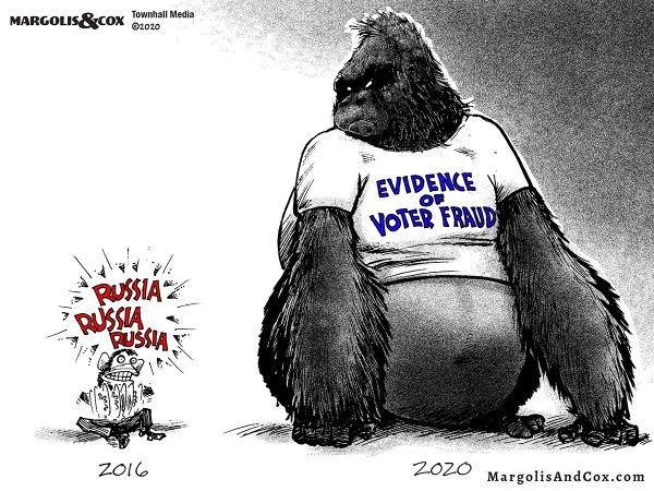 vote fraud in 2020
