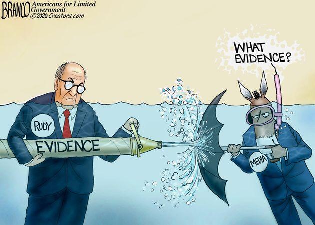 2020 fraud evidence