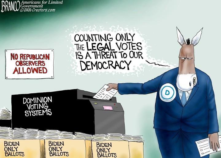 legal votes cartoon