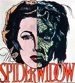 spider widow