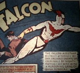 falcon timely